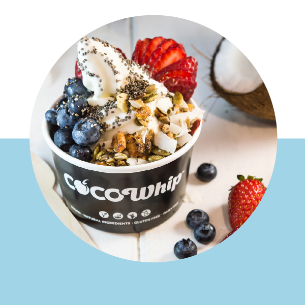 An image of a Cocowhip creation with granola, chia seeds, blueberries, strawberries and coconut flakes
